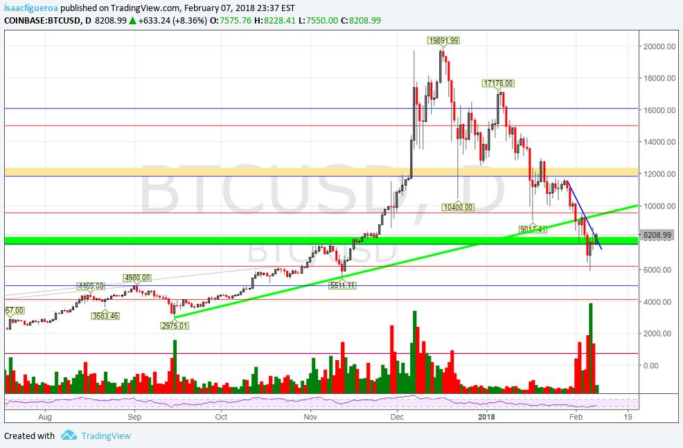 bitcoin feb 7.png